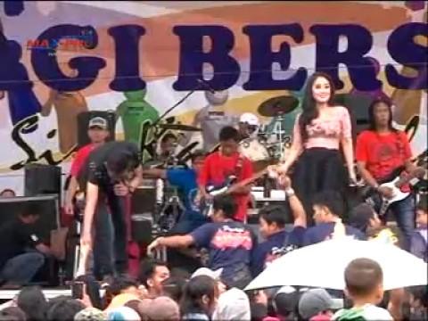 New Pallapa Dinding Kaca Anisa Rahma feat Gerry