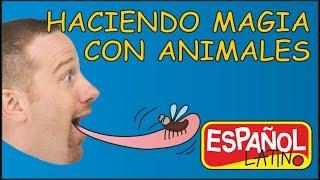 haciendo-magia-con-animales-aprender-con-steve-and-maggie-espaol-latino-cuentos-para-nios