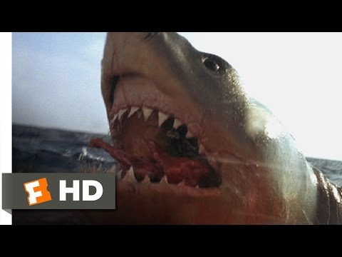 Jaws: The Revenge 38 Movie   You Got 'Im 1987 HD