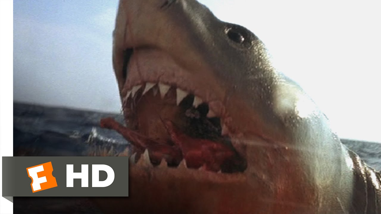 Download Jaws: The Revenge (3/8) Movie CLIP - You Got 'Im (1987) HD