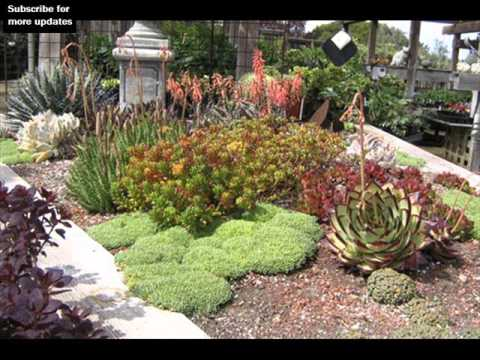 Landscaping Rocks And Plants | Rock Landscape Design Ideas