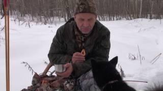 Охота на куницу в новогодние каникулы.