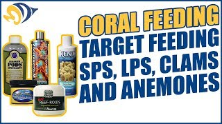 Coral Feeding: Target Feeding SPS, LPS, Clams and Anemones