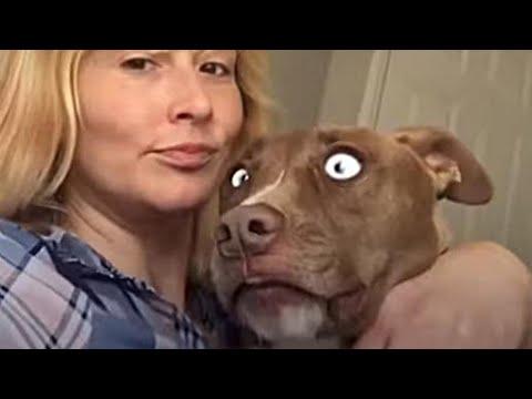 Слепую собаку летели камни за 5 мая