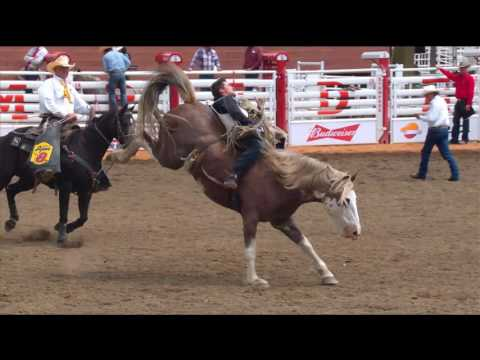 Calgary Stampede Rodeo - Daily Highlights - Day 3