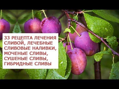 ОАО Издательство Медицина