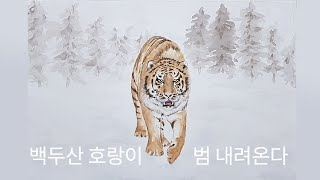 백두산 호랑이X범 내려온다-이날치 │Baekdu Mou…
