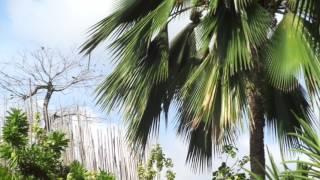 Melaenis Garden Resort Tanjay City Philippines