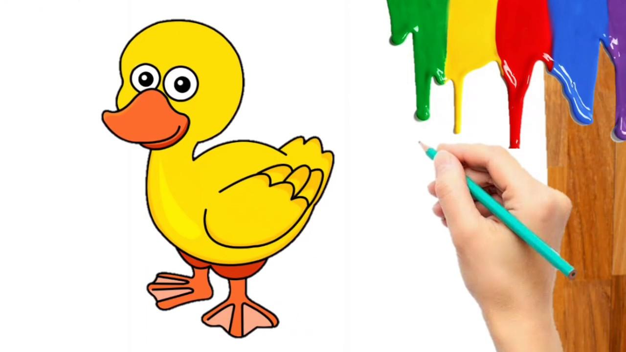 Cara Menggambar Mewarnai Hewan Kartun Bebek Potong Angsa