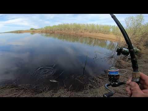 Рыбалка с Сыном на спиннинг и сети.