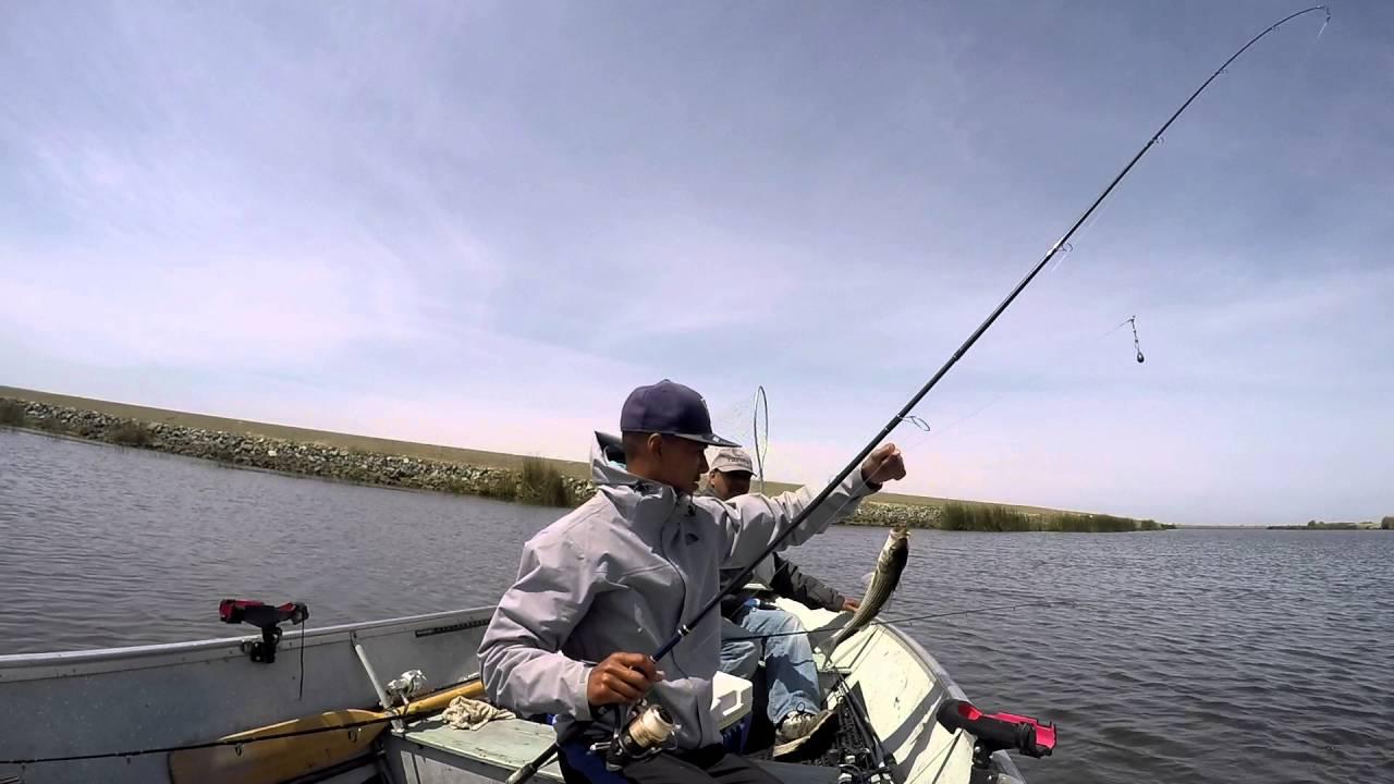 California delta striper fishing youtube for Ca delta fishing report