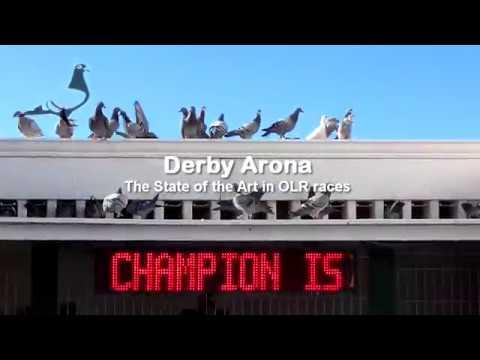 🎬 📢 💓  SEA RACE-1 2018 Liberation + Arrivals MOVIE ! 🏁🔔 Full Info www.DERBYARONA.com 😉