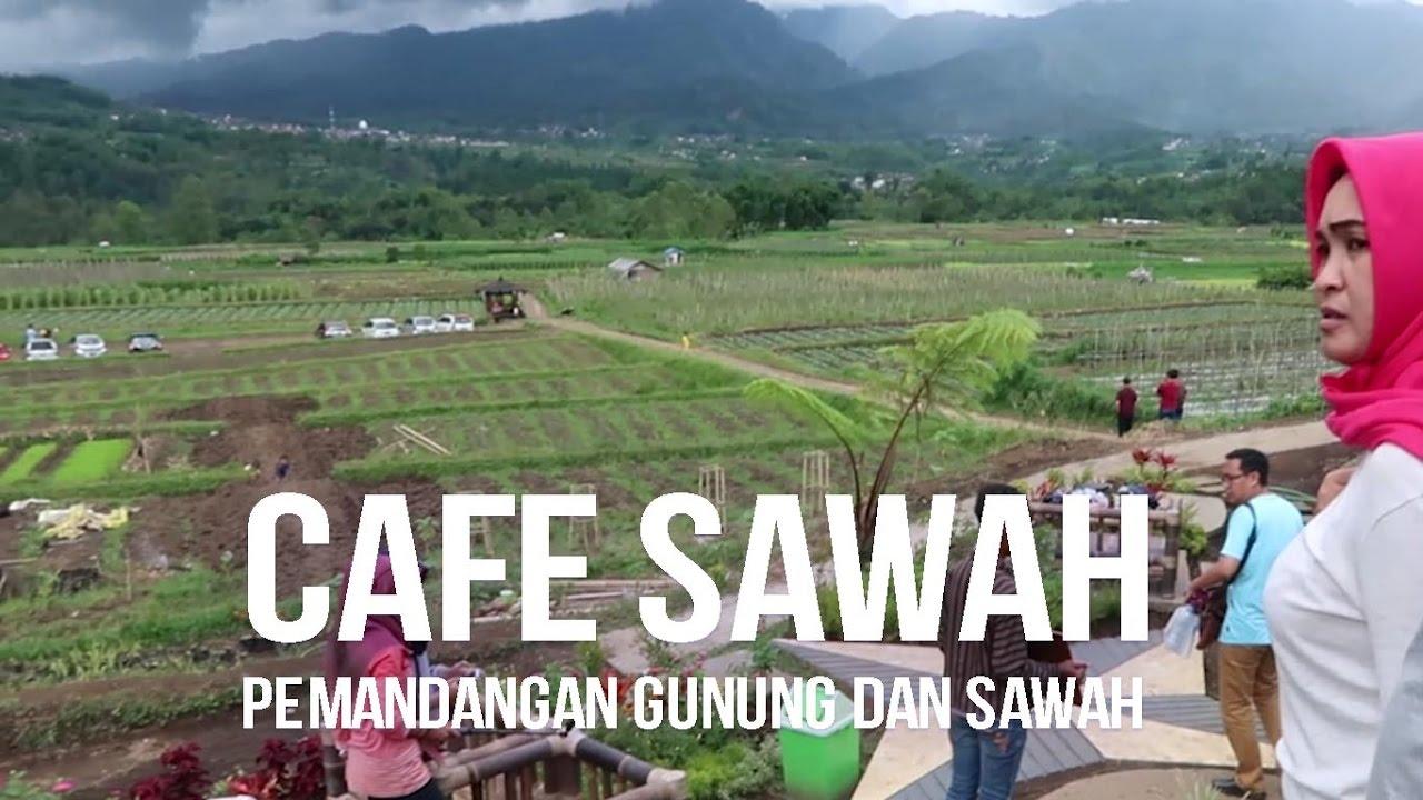 Cafe Sawah Pujon Kidul Batu Cara Asyik Nongkrong Di Tengah Sawah