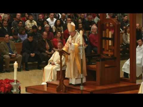 Homily: Solemnity of the Nativity of Our Lord / Midnight Mass (12/25/2012)