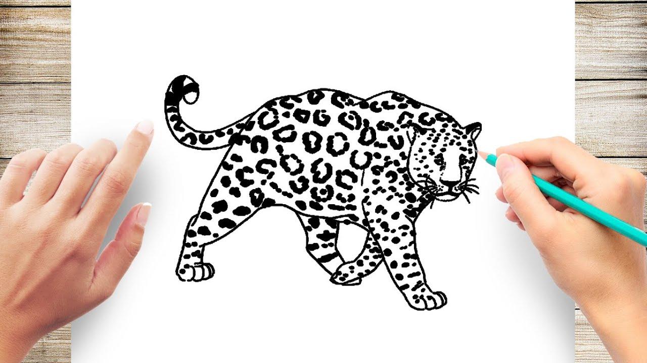 Jaguar Coloring Pages Youtube Portraits