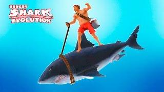ГОЛОДНЫЕ АКУЛЫ #1 Крутая игра про акулу. Управляй акулой в подводном царстве.