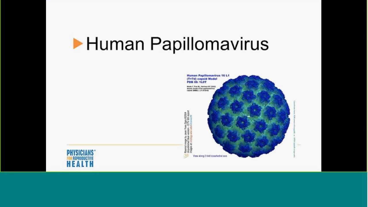 HPV-fertőzés tünetei és kezelése - HáziPatika - Papillom mikroszkóp