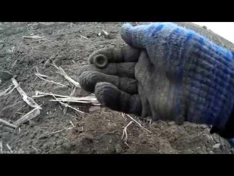 видео: охота на Клад. Чудо Тракторист. 7 монет и Нежданчики! xp deus metaldetecting