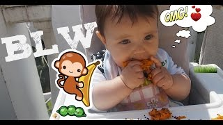 QUE COME NATURA ? Método Baby-Led Weaning