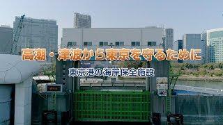高潮・津波から東京を守るために ~東京港の海岸保全施設~