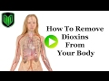 How to Remove Dioxins from your body