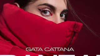 GATA CATTANA - BANZAI
