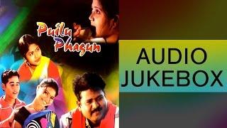Puilu Phagun | Santhali New Romantic Song | AUDIO JUKEBOX | Sawan, Jawarani | Gold Disc