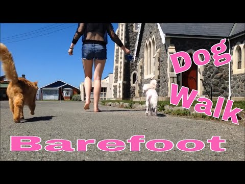 Barefoot Walking The Dog In Summer | New Zealand Life