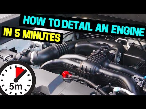 Best way to Clean & Detail Your Car Engine in 5 Minutes!