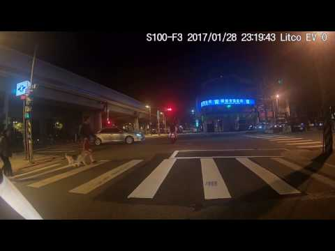 三寶闖紅燈