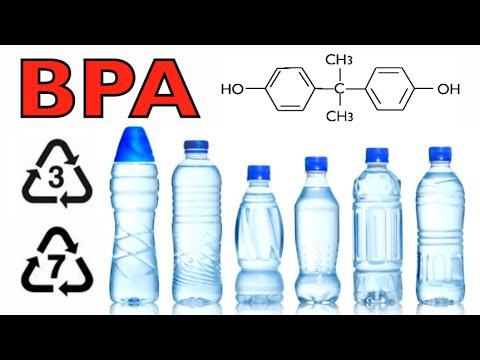 Is BPA Safe? | The Facts