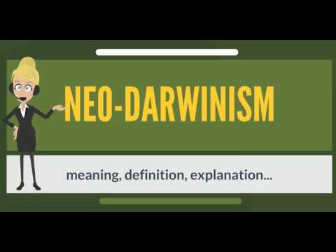 What is NEO-DARWINISM? What does NEO-DARWINISM mean? NEO-DARWINISM meaning & explanation