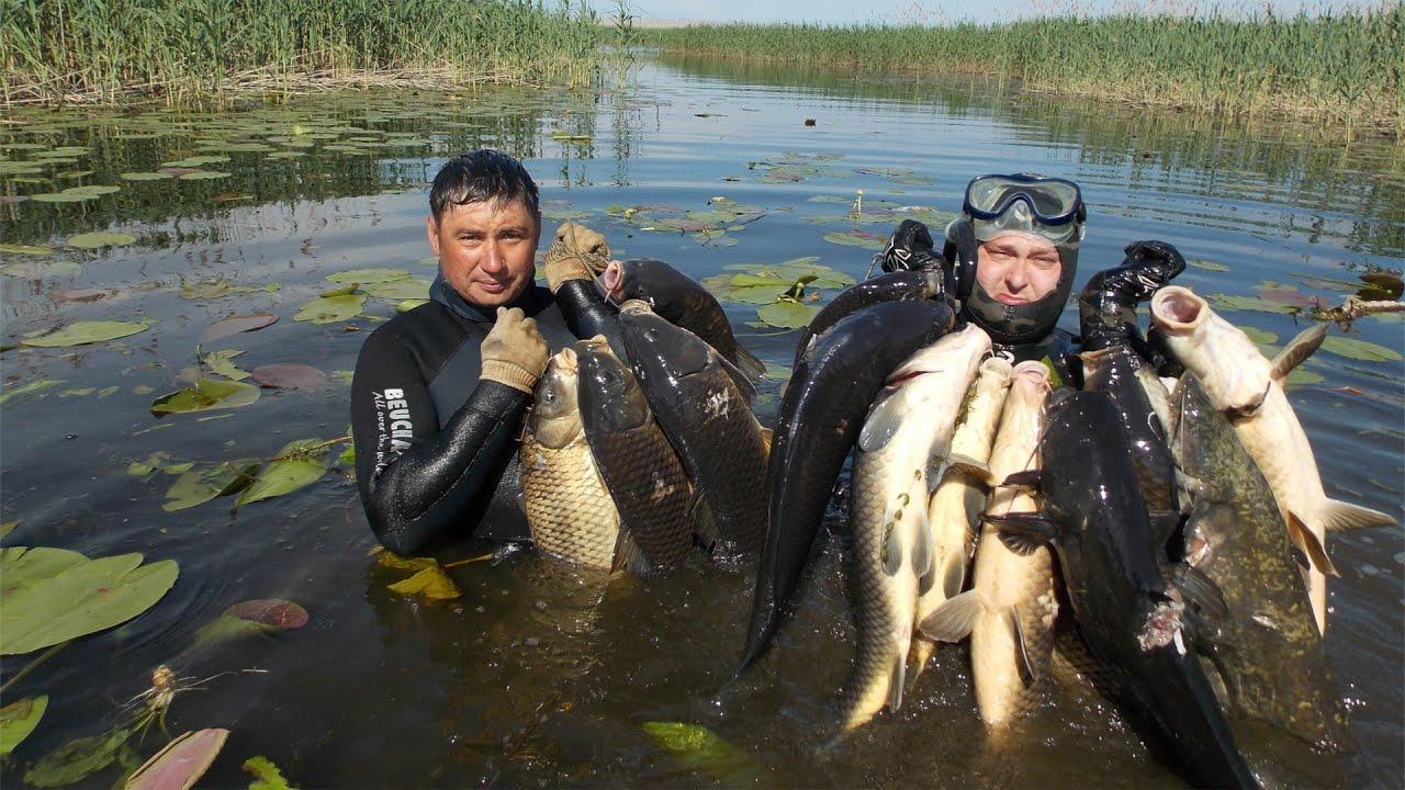 рыбалка на курминском заливе зимой