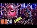 Ninja Gaiden (NES) FINAL