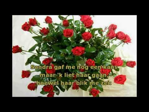 Jimmy Frey -  Rozen Voor Sandra ( KARAOKE ) Lyrics