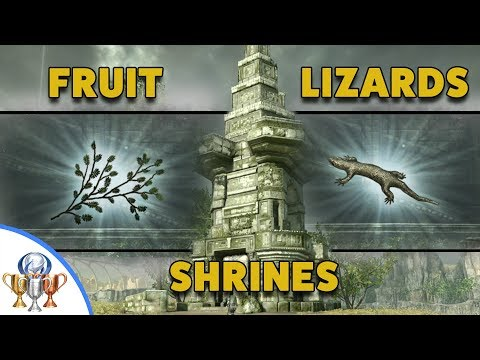 Shadow of the Colossus PS4 Remake - All Fruit, Shrines and Lizard Collectible Locations