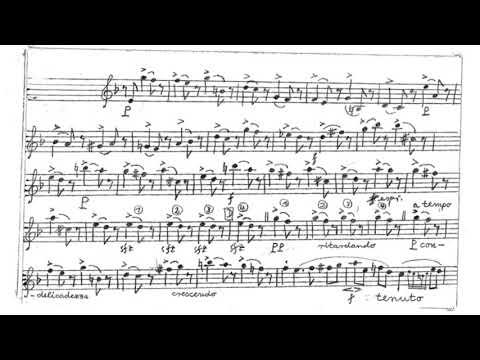 GRAND DUO Concertant op. 48, C M v  Weber