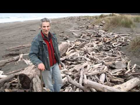 Reclaiming myrtlewood from the beach. David Groth documentary, chapter 1 of 9.