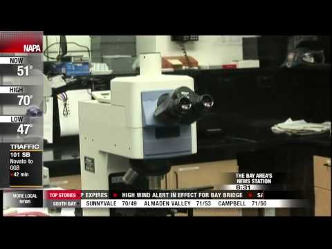 Six Meth Tests Return False Positives in Santa Clara County