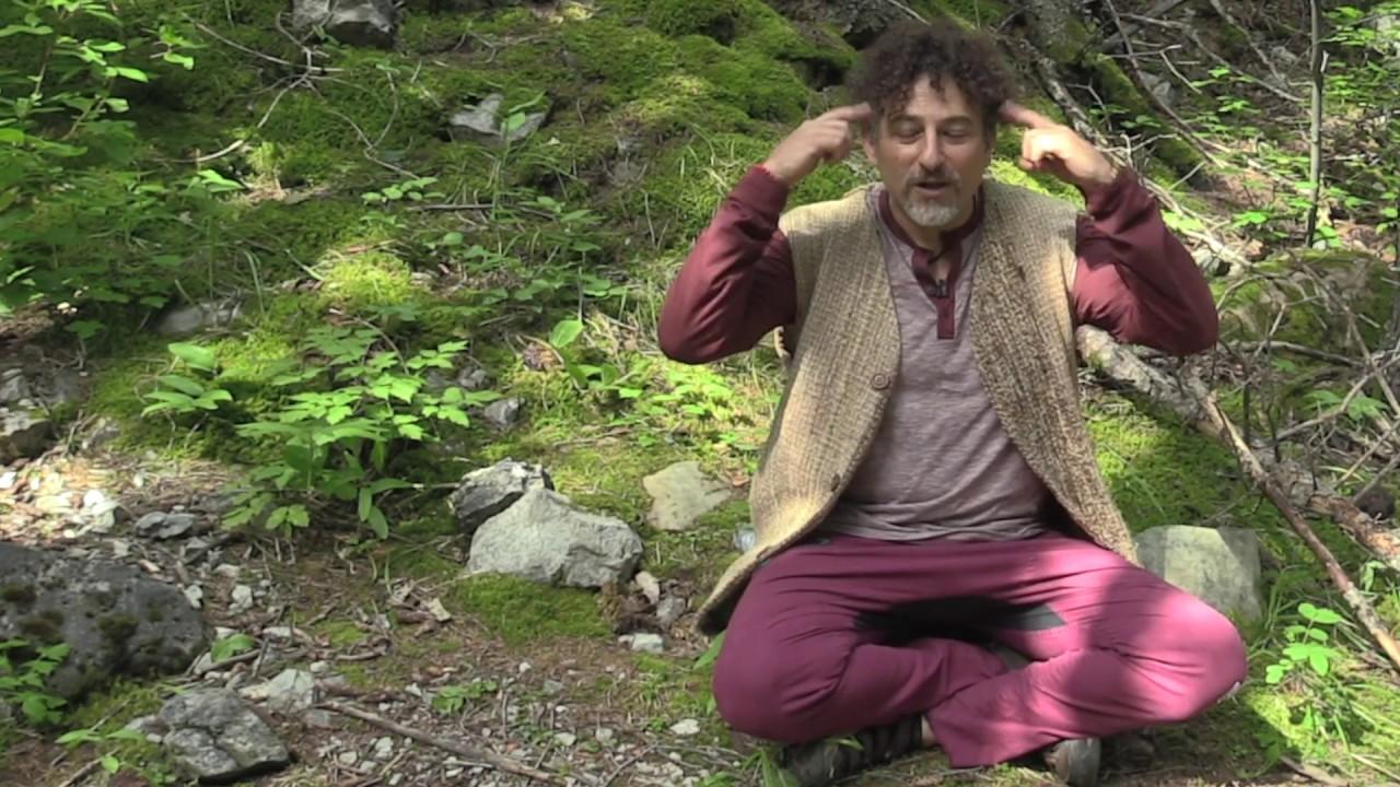David Avocado Wolfe on Meditation