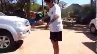 Wooden Snake Attacks Man