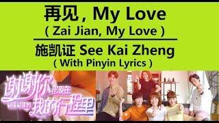 再见,My Love / 施凯证 See Kai Zheng / 谢谢你出现在我的行程里 / Walk With Me