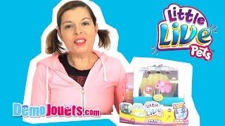(JOUET) Little Live Pets Souris Chipie Panier Kanai Kids - Démo Jouets