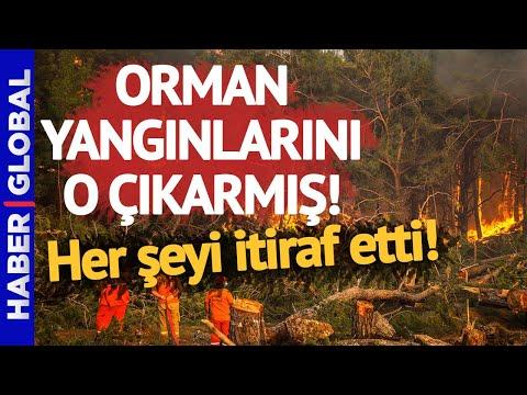 Orman Yangınlarını O Çıkarmış! Yangının 9. Gününde İtiraf Etti