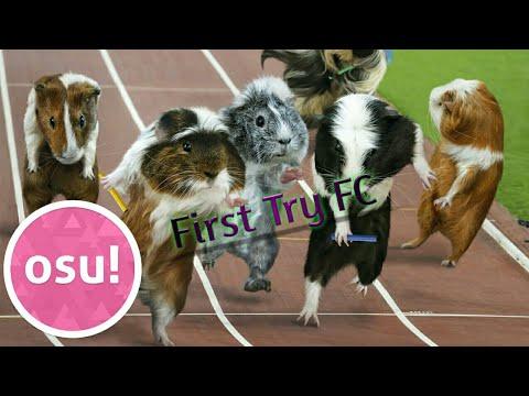 Parry Gripp Guinea Pig Olympics Expert 5 29 Hdhr Fc Youtube
