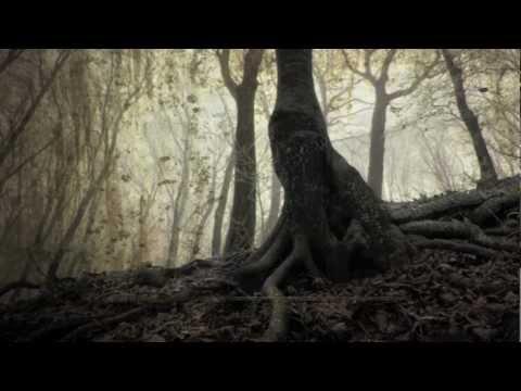Stalker MISERY 2.0 teaser: themes