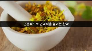 경기도 한의사회 한의학 홍보