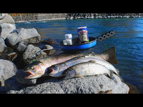 Catch and Cook Rainbow Trout (Fish Sandwiches) + First Sturgeon of the Year! thumbnail