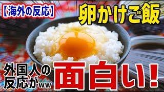 【海外の反応】卵かけご飯の外国人の反応が面白い!卵かけご飯は外国人からは賛否両論www【日本人も知らない真のニッポン】