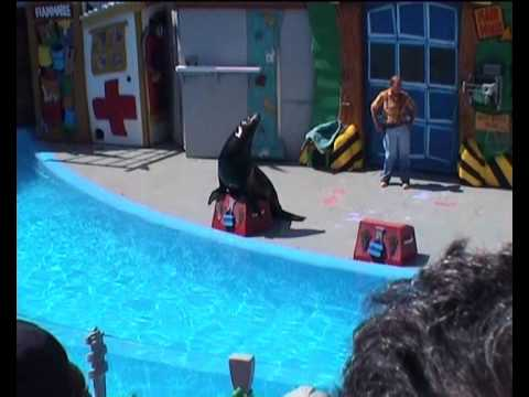 SeaWorld San Diego: Animal show with Clyde, Seamore and Tiny (29-6-2002)